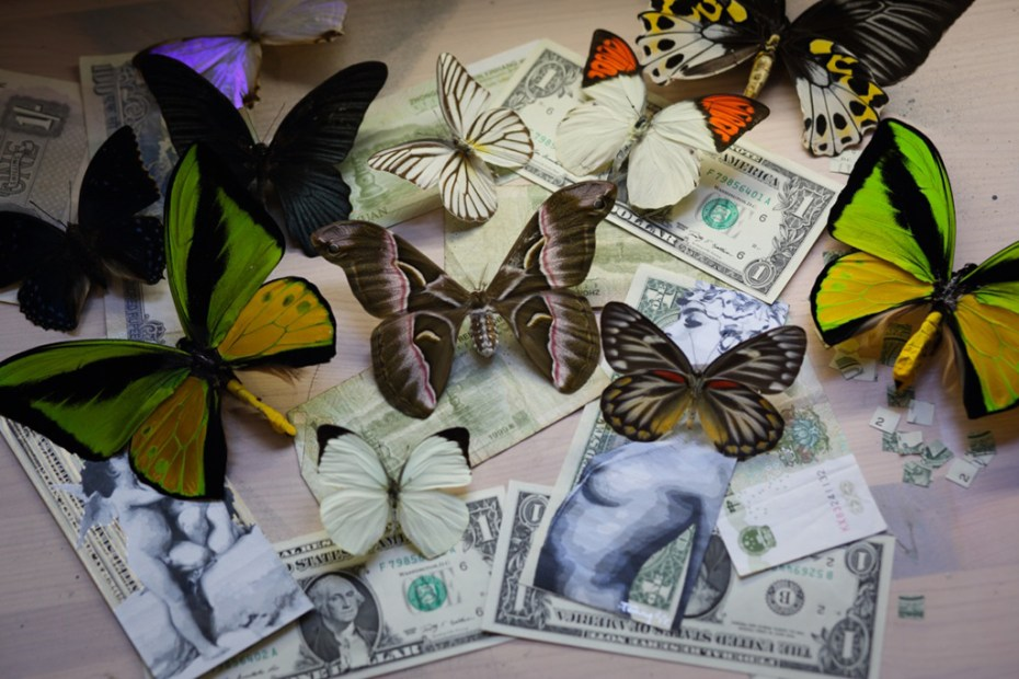 "Image of Penny ""Economy of Scale"" Exhibition @ Rook & Raven Gallery"