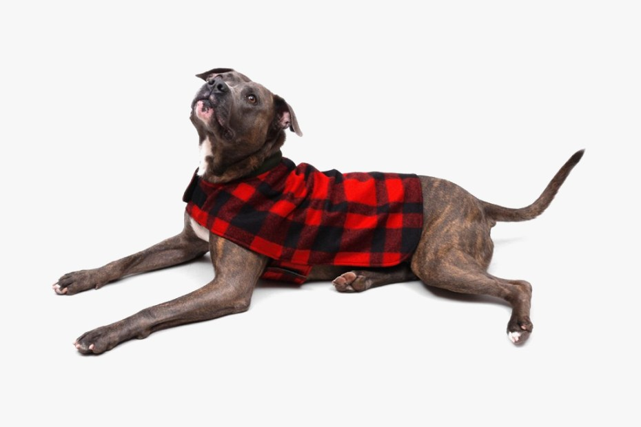 Image of Filson 2012 Reversible Red Plaid Dog Coat