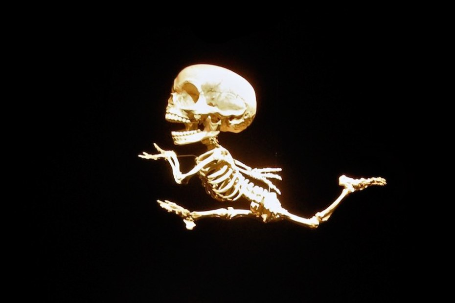 Image of Art Focus: Hyungkoo Lee Recreates the Skeletal Structures of Cartoon Characters