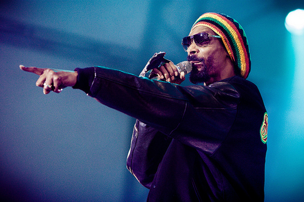 Image of Polls: Snoop Dogg vs. Snoop Lion
