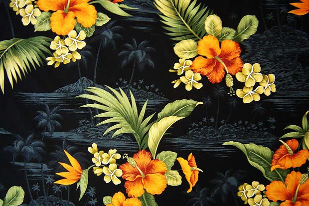 Image of Materials and Patterns: Hawaiian Print