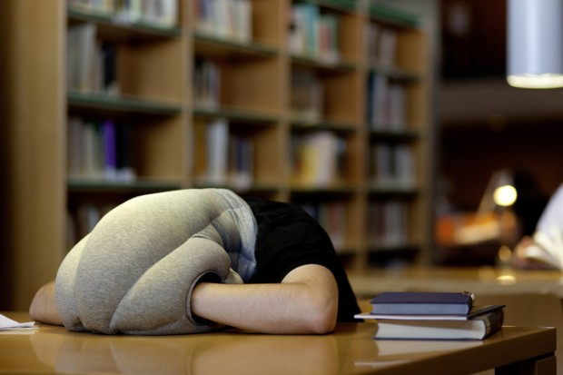 Image of Take a Nap Anywhere with the OSTRICH PILLOW