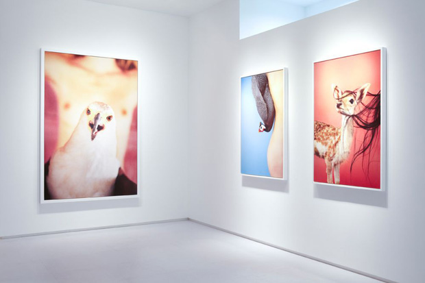 Image of Ryan McGinley Reach Out, Im Right Here @ Tomio Koyama Gallery