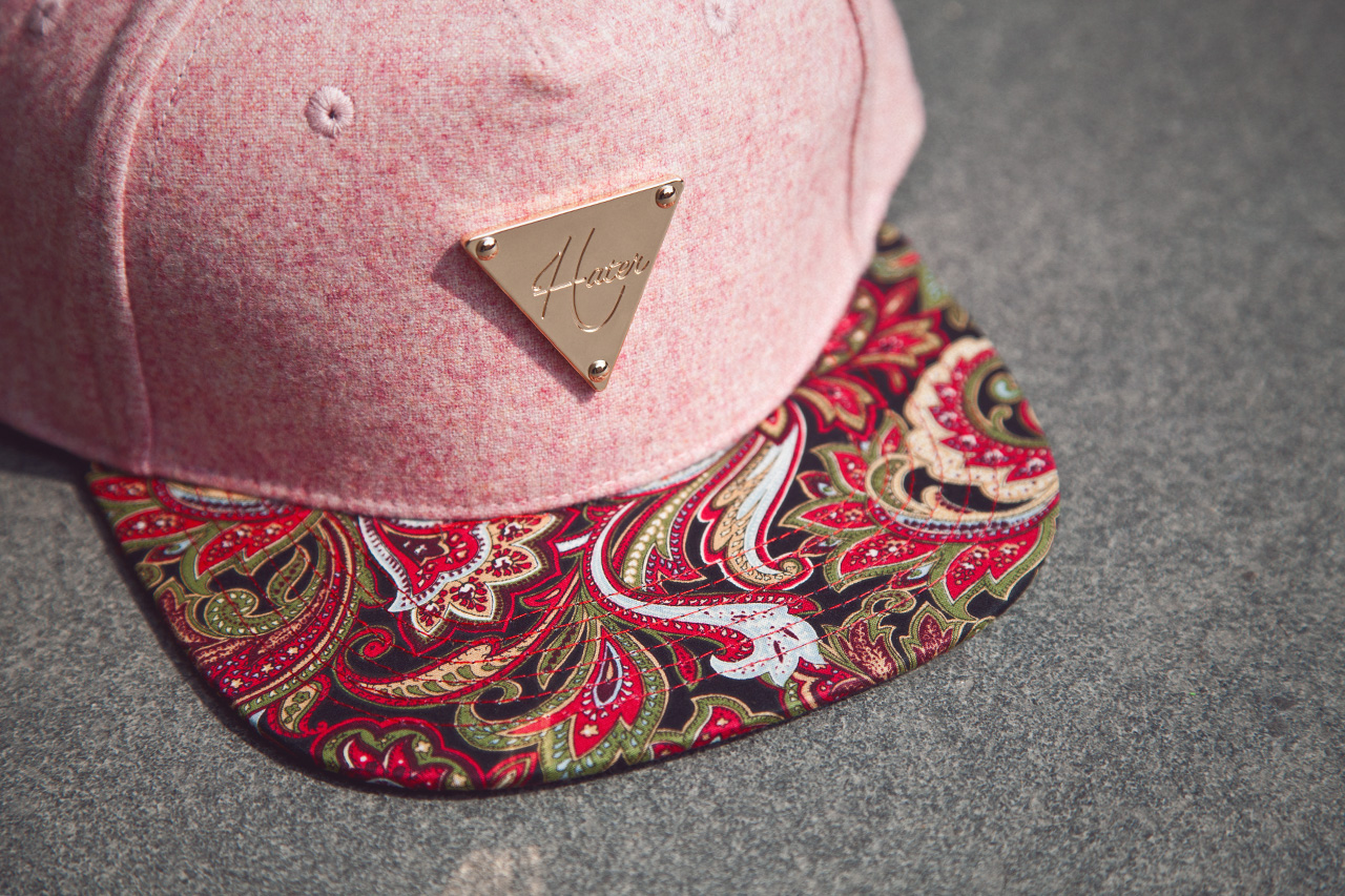 Image of Hater Snapback 2013 Collection