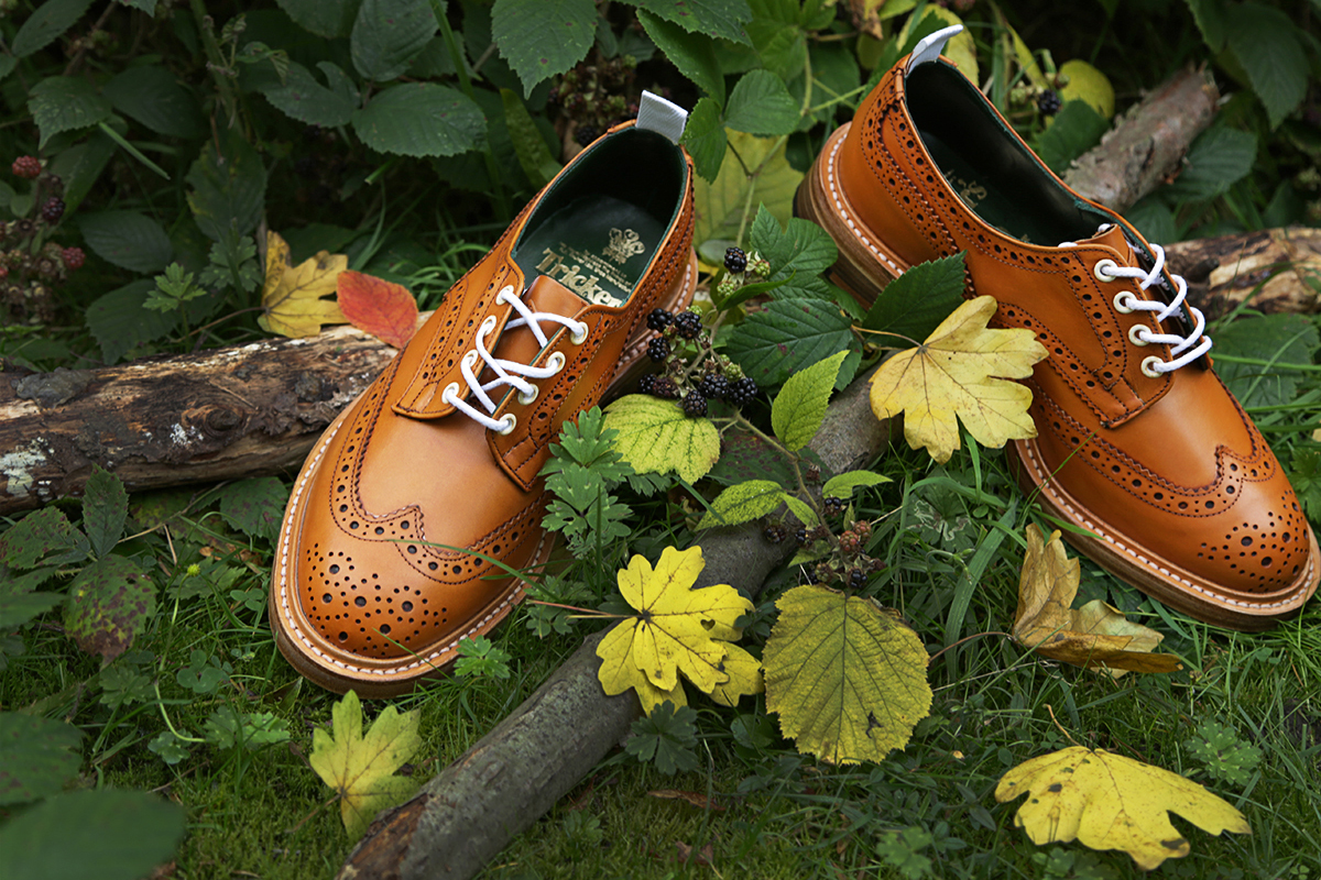 Image of Tricker's for End 2013 Fall/Winter Bourton Derby Brogue