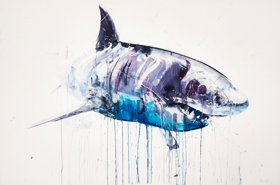 "Image of Dave White ""Aquatic"" Exhibition @ Lawrence Alkin Gallery"