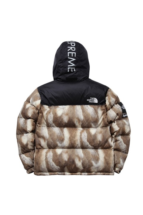 Image of Supreme x The North Face 2013 Fall/Winter Collection