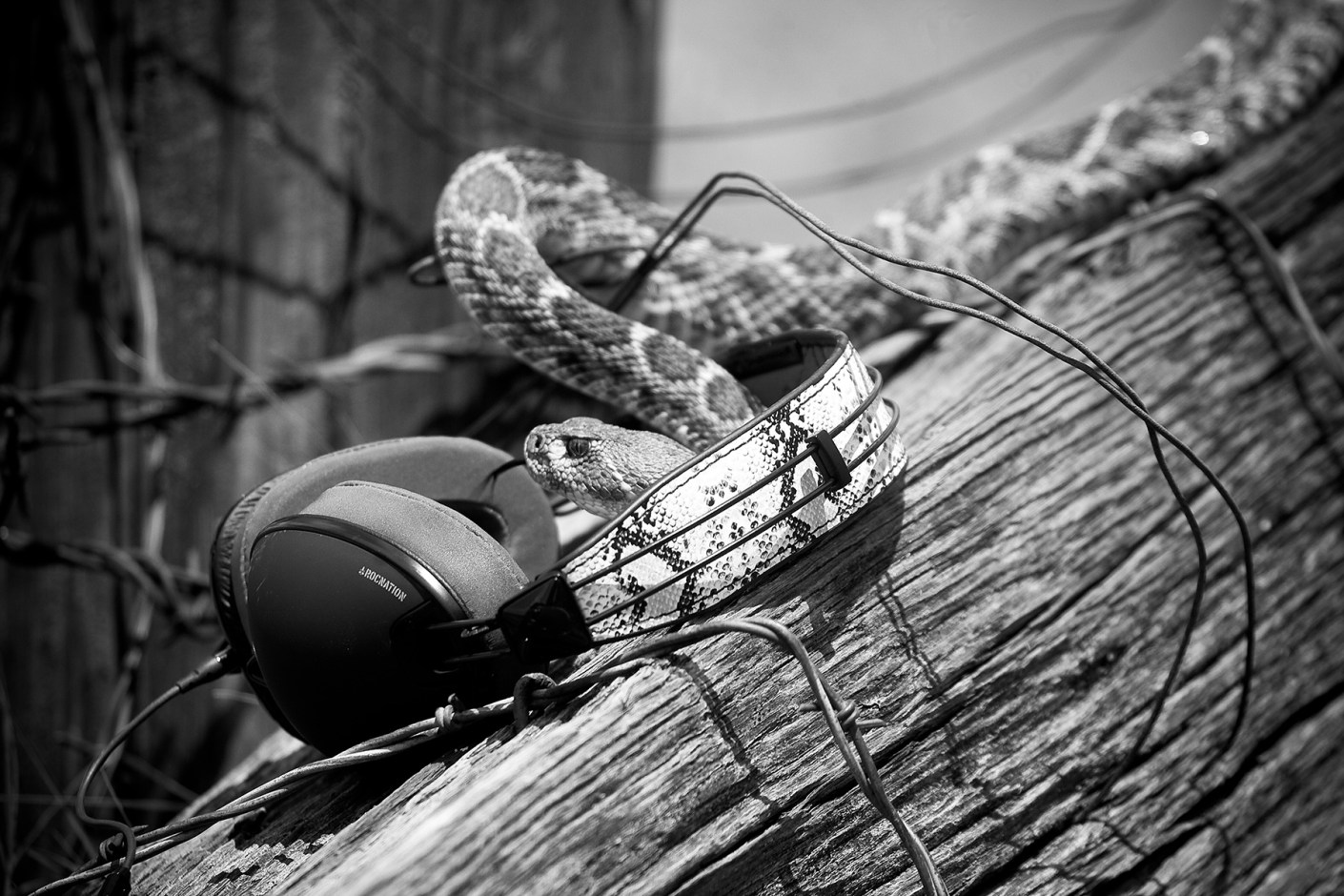 Image of Eric Koston Dreams up Skullcandy Signature Series