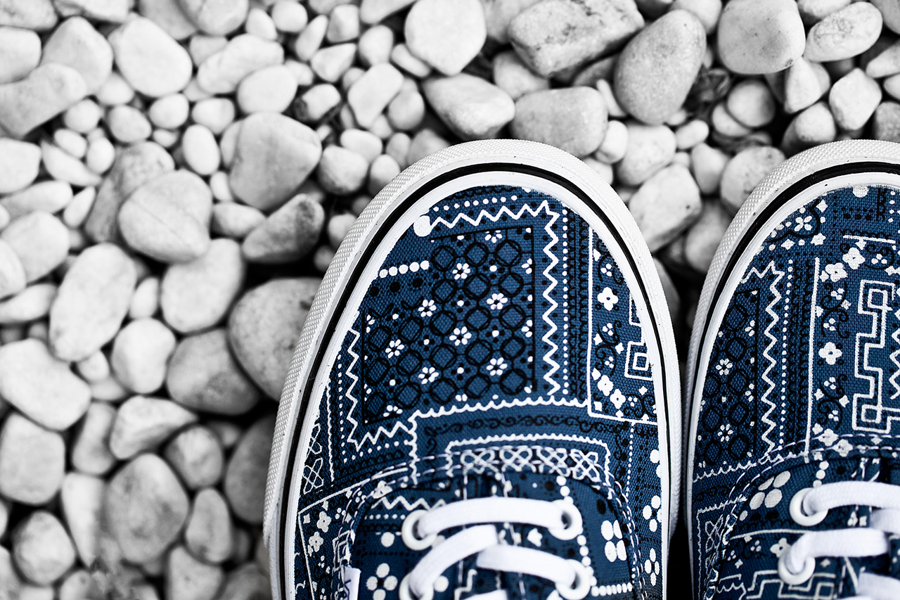 Image of Vans Classics 2014 Spring Van Doren Series Authentic Pack