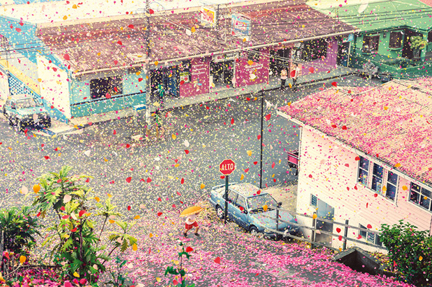 Image of Check Out Nick Meek's Photographs of Costa Rica Covered in Flowers for Sony