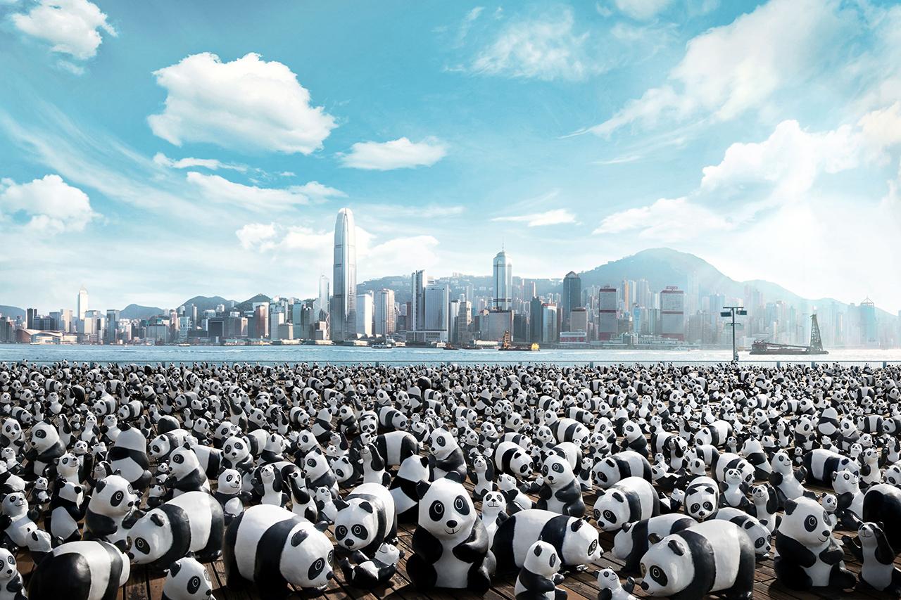 Image of 1,600 Panda World Tour Coming to Hong Kong