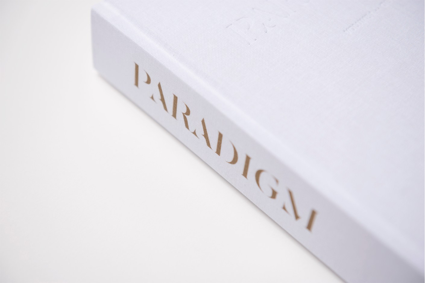 "Image of Paradigm Vol. I ""Genesis"" Book"