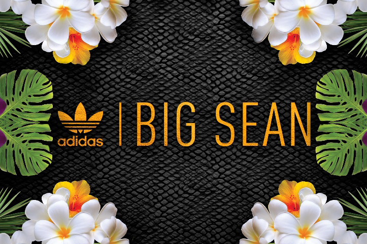 Image of Big Sean x adidas Originals 2014 Fall Teaser