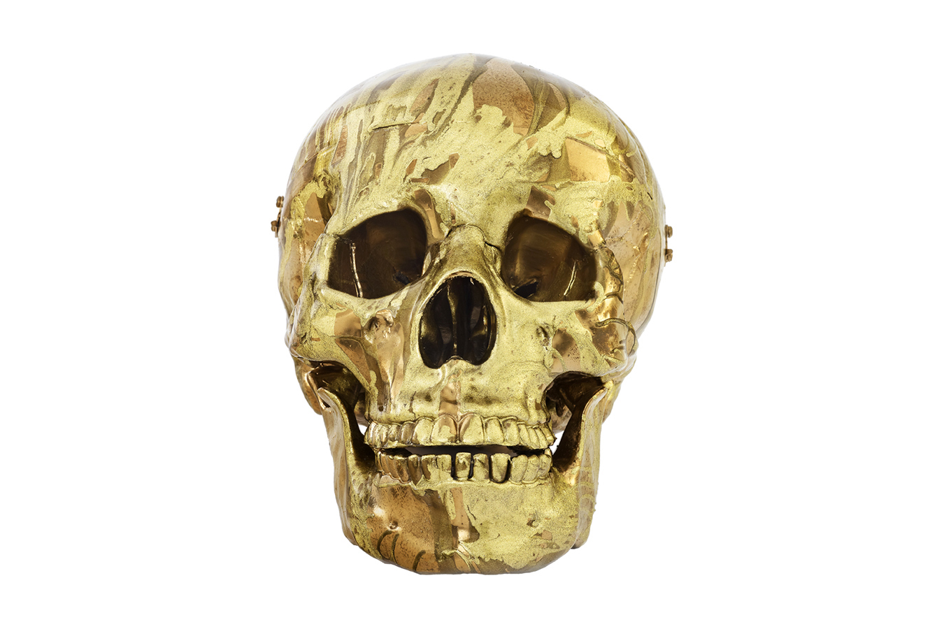 Image of Damien Hirst's 'Magnificent Head'