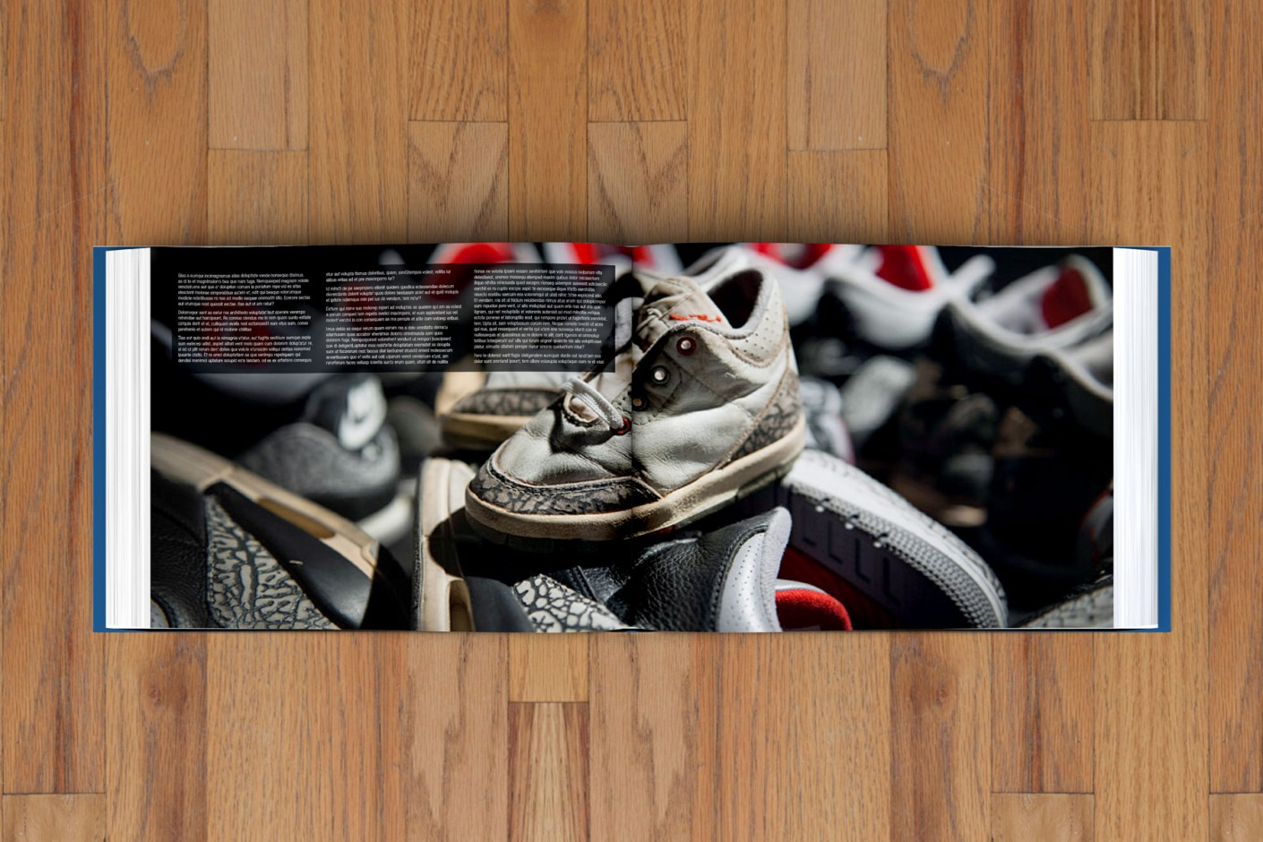 Image of Encyclopedia of Air Jordan