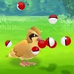 Pokemon Pidgey Go