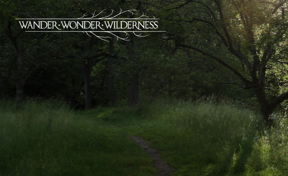 Wander Wonder Wilderness Publicity Still