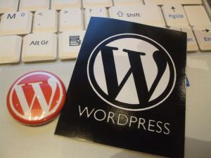 wordcamp-030-800x600