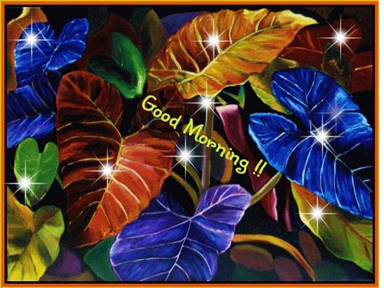 Sorry Quotes Wallpaper For Friends Vibrant Colors For Your Morning Free Good Morning Ecards