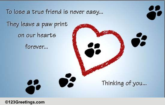 Pets Loss of Pet Cards, Free Pets Loss of Pet Wishes, Greeting Cards