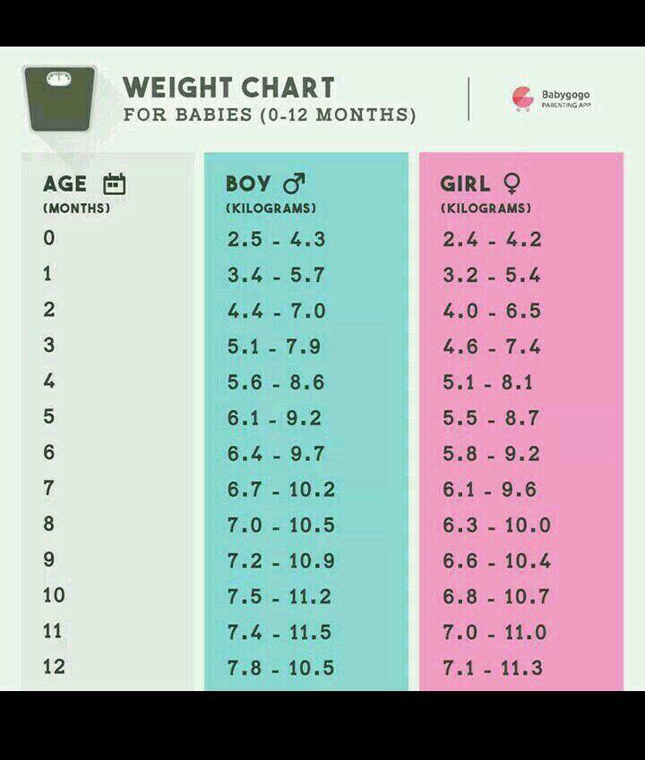 babies weight chart by month - Mersnproforum