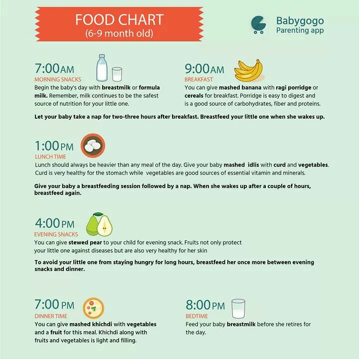 Diet chart for 8th month baby