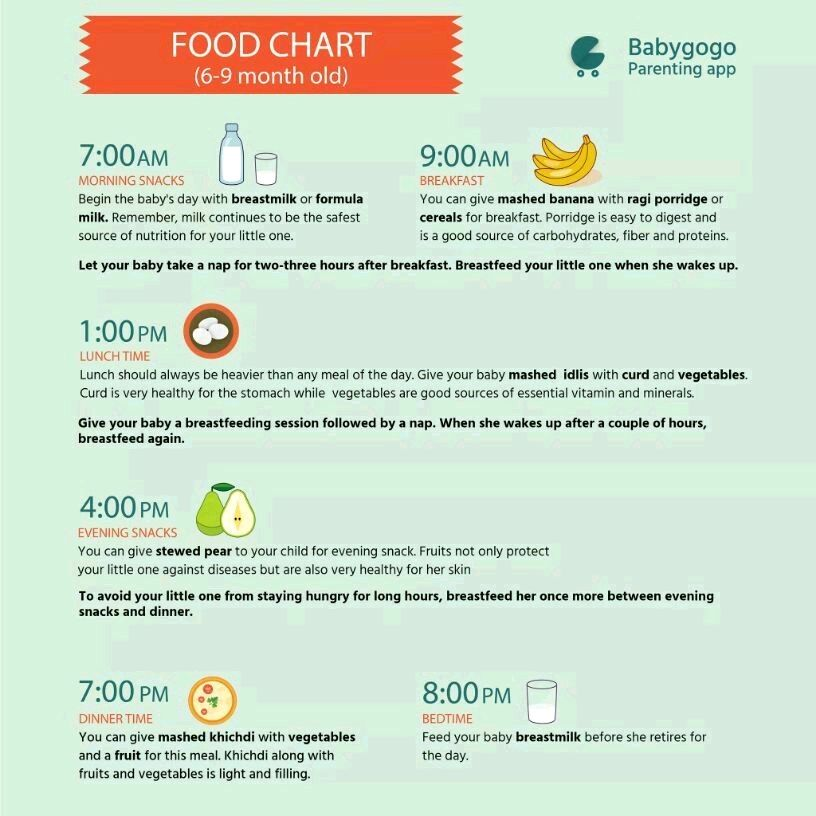my son is 8 months now I need daily food chart