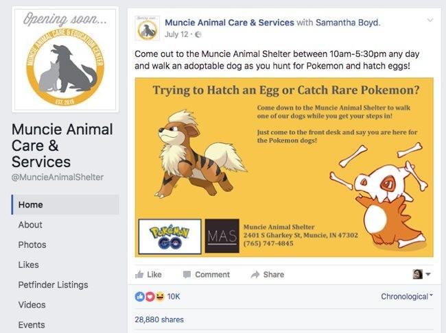 Muncie Animal Shelter