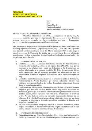 Calaméo - FORMATO ESCRITO DETENCIONES ARBITRARIAS - PEDIDO HABEAS CORPUS - formato de informe escrito