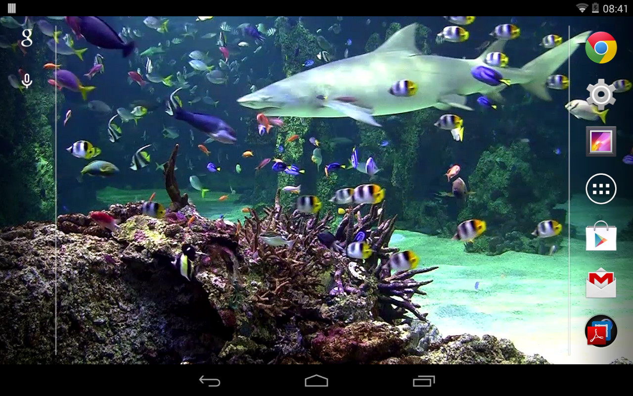 Interactive 3d Aquarium Live Wallpaper Aquarium Live Wallpaper Free Android Live Wallpaper