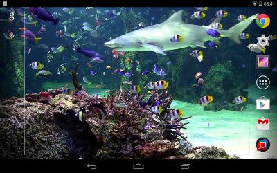 Aquarium live wallpaper Free Android Live Wallpaper download - Appraw