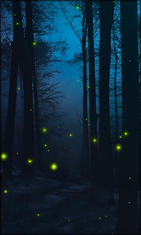Download 3d Wallpaper Apk Fireflies Live Wallpaper Free Android Live Wallpaper