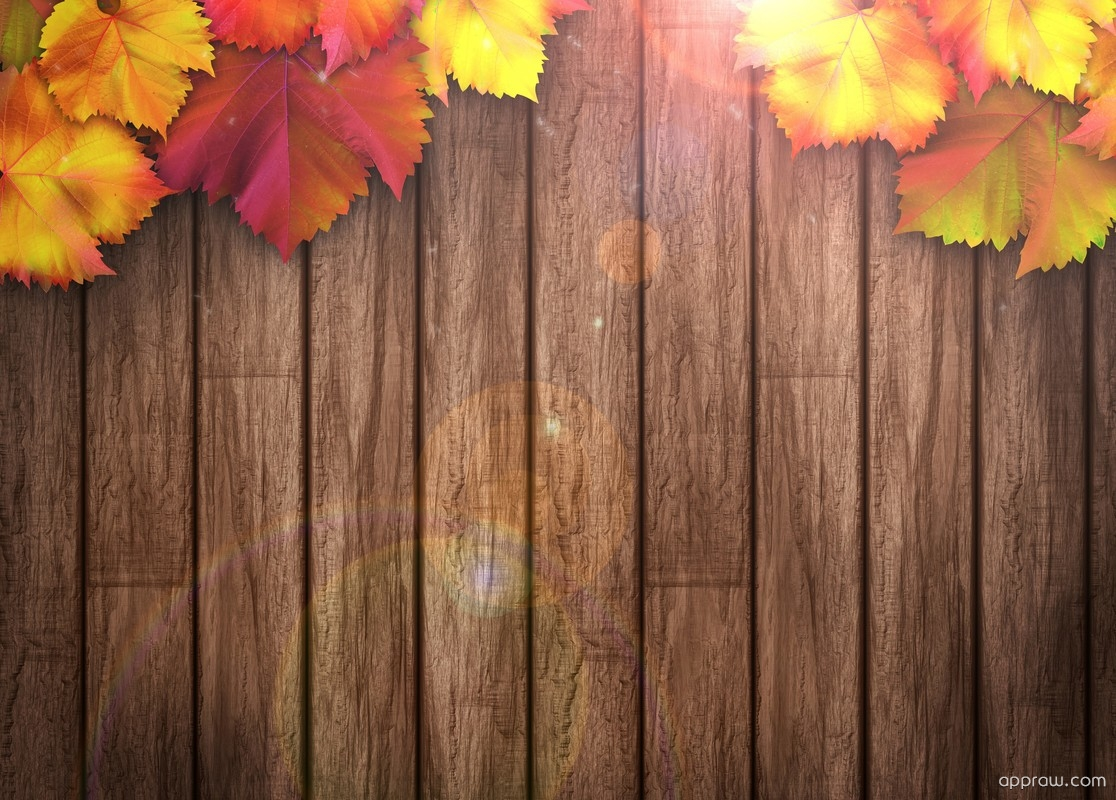 Fall Pumpkin Iphone Wallpaper Autumn Leaves On Wooden Background Wallpaper Download