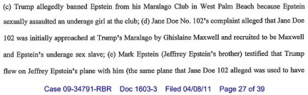 Filing:President Trump allegedly issued this ban after he learned that Epstein had sexually assaulted an underage girl (above)