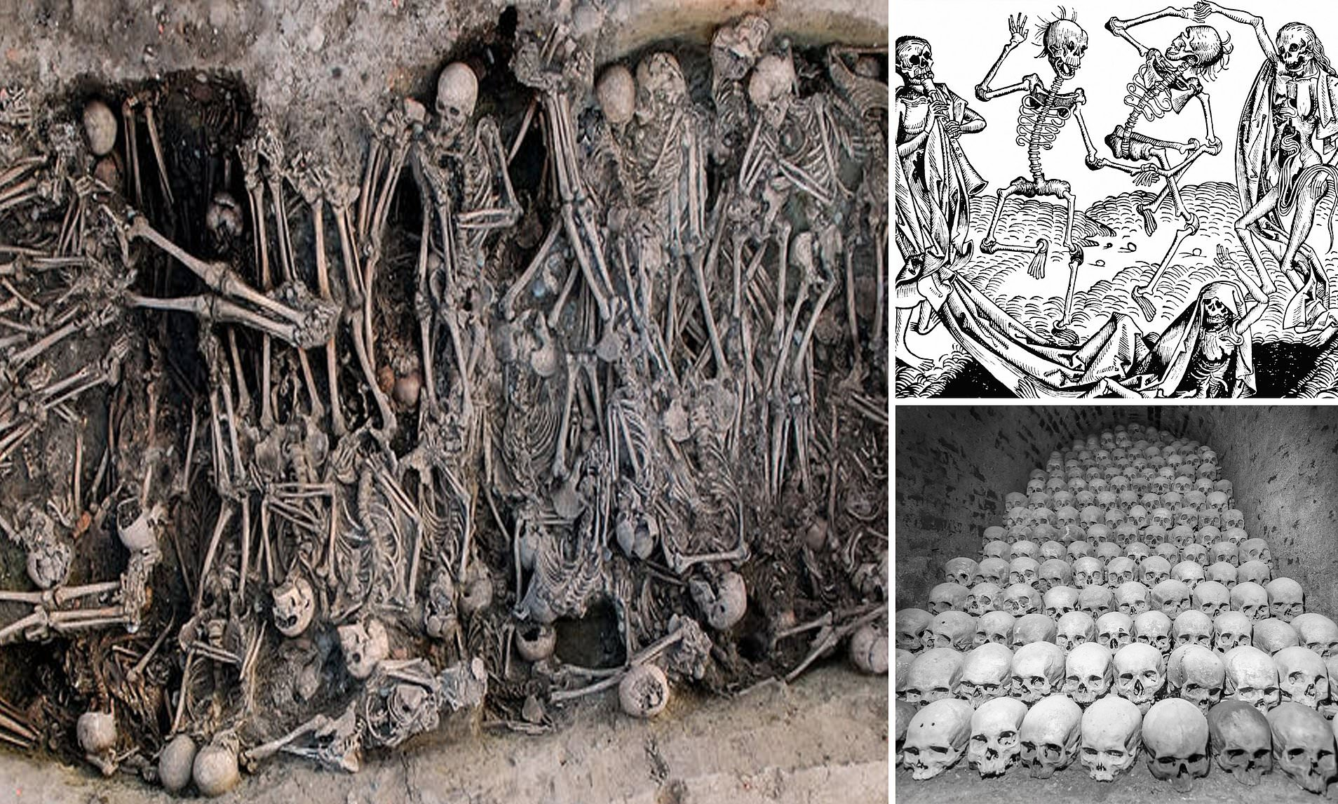 Badspiegel Jolled Victims Teeth Reveal How The Black Death That Killed