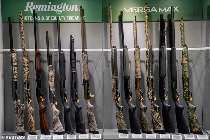 The National Rifle Association, 10 mainly Republican-led states and 22 Republicans in Congress were among those urging the court to jump into the case and end the lawsuit against Remington