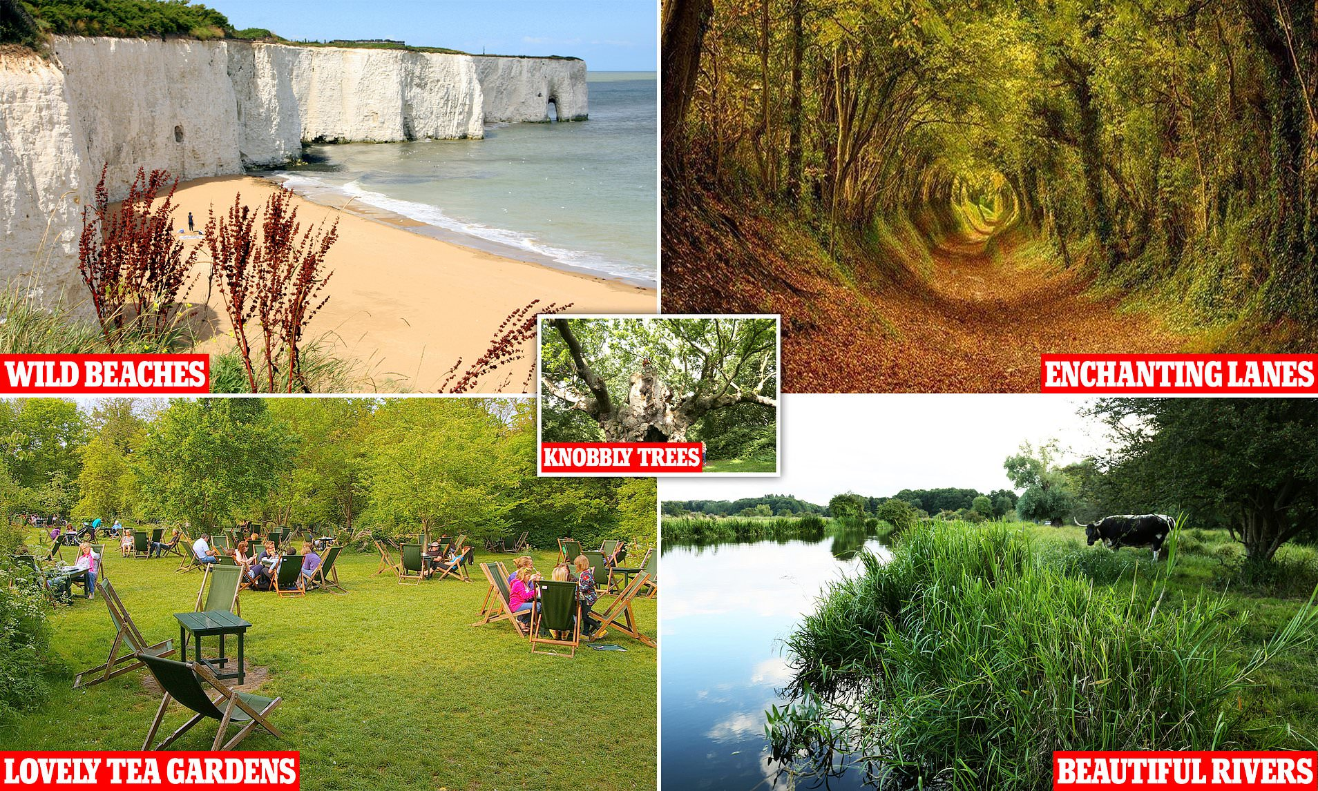 Wild Guide Reveals The Stunning Secret Beauty Spots In London And The South East Daily Mail Online