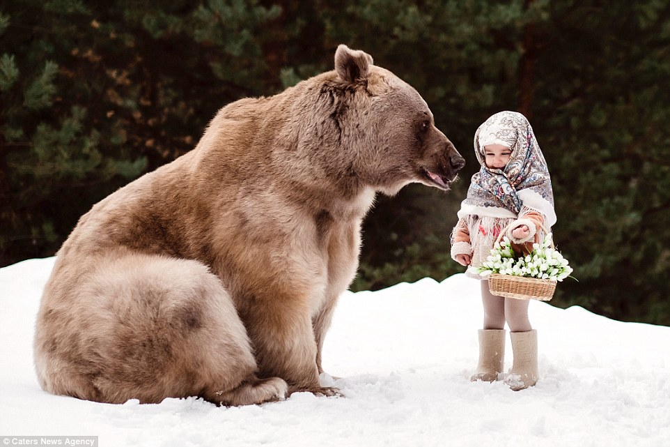 Cat Girl Wallpaper Youngsters Pose With Grizzly Bear In The Forest In Moscow