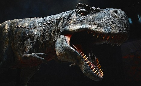 Adventure Time Image Tyrannosaurus Rex Jpg 9 The T Rex Factor The new 10m Walking With Dinosaurs show promises x