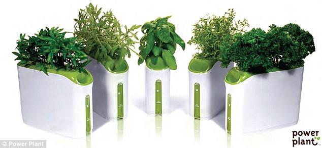 Permalink to Indoor Herb Garden Kit With Light