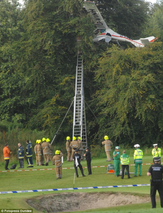 Read The Book Online Pilot Owes His Life To Biggles After Crashing Plane Into A