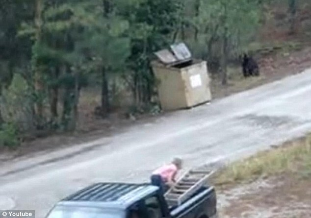 Video Three Bear Cubs Rescued From A Dumpster In Ruidoso