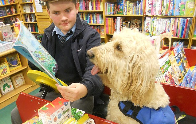 Animal magic How a dog has transformed the life of a quiet boy with