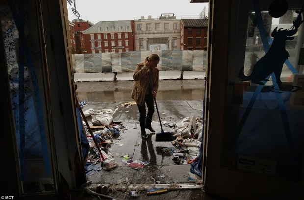 Mopping up: Shop owner Amanda Zink begins the arduous task of cleaning her store The Salty Paw, which was completely flooded on the waterfront of lower Manhattan