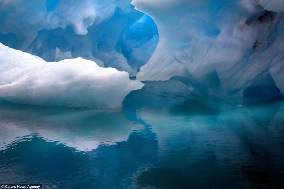 Srk 3d Wallpaper Ice Capades The True Blue Beauty Of The Icebergs Of
