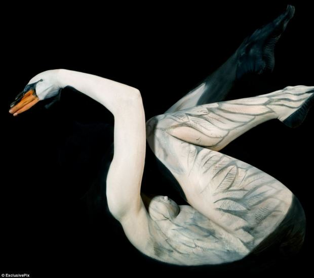 A model is turned into a human swan in this incredible piece of body art work