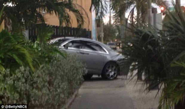 Target: The luxury vehicle could be seen crashed at an angle after the shooting