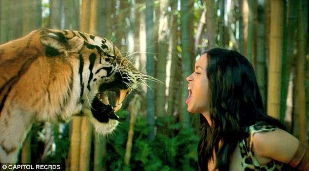 Leopard Animal Print Wallpaper Katy Perry S Roar Video Watch Singer Swing Through The