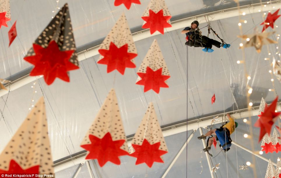 christmas decorating stores - Rainforest Islands Ferry - how to store christmas decorations