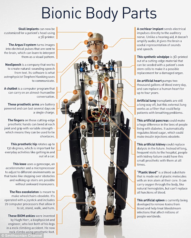 Frank, the first bionic man Education Pinterest Circulatory - customer service manager resume